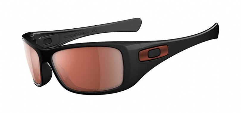 OAKLEY POLARIZED HIJINX